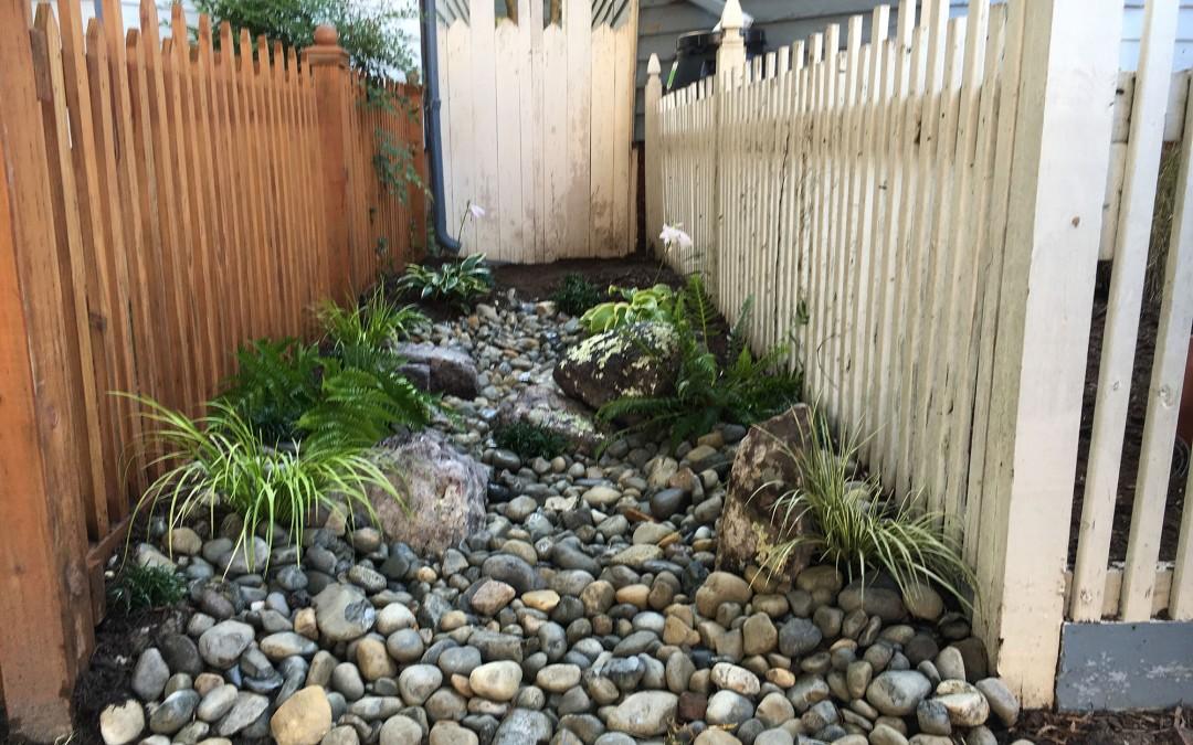 Incorporate a Rain Garden Into Your Landscape