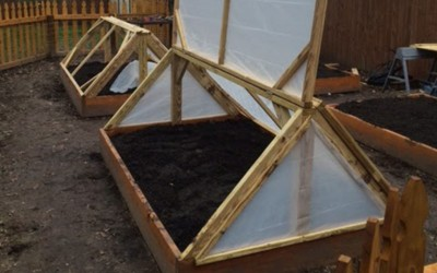 Cold Frames – Growing in all Seasons